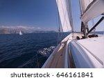 swallowtail seaperch  anthias... | Shutterstock . vector #646161841