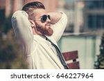 handsome bearded businessman in ... | Shutterstock . vector #646227964