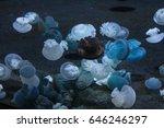 s.e.a aquarium  sentosa ... | Shutterstock . vector #646246297