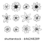Hand drawn vector illustration - Flowers set. Floral collection in sketch style. Perfect for wedding invitations, greeting cards, quotes, blogs, posters etc