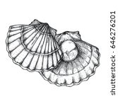 scallop shell hand drawn icon.... | Shutterstock .eps vector #646276201