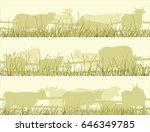 set of horizontal vector... | Shutterstock .eps vector #646349785