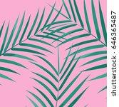 palm leaves background.... | Shutterstock .eps vector #646365487