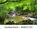 Fall Forest Stream Smolny In...