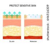 protect sensitive skin. dry... | Shutterstock .eps vector #646516309