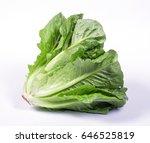 lettuce salad isolated on white   Shutterstock . vector #646525819