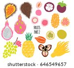 hand drawn tropical and exotic  ... | Shutterstock .eps vector #646549657
