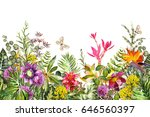 Stock photo seamless border with tropical plants flowers leaves exotic watercolor floral pattern with 646560397