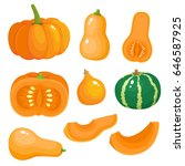 bright vector set of colorful...   Shutterstock .eps vector #646587925
