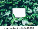 Paper Card Mockup On A Green...