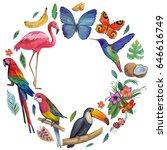 tropical garden birds ... | Shutterstock . vector #646616749