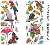 tropical garden birds ... | Shutterstock . vector #646616779