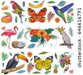 tropical garden birds ... | Shutterstock . vector #646616791