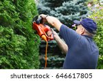 old man trimming hedge with... | Shutterstock . vector #646617805