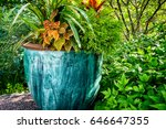 Large Outdoor Potted Plant....