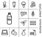 leaf icon. set of 13 outline... | Shutterstock .eps vector #646671454
