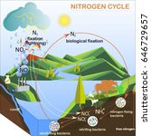scheme of the nitrogen cycle ... | Shutterstock .eps vector #646729657