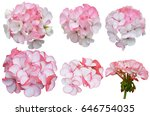 Geranium Blossom Bouquet Of...