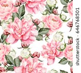 watercolor pattern with peony... | Shutterstock . vector #646768501