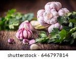 fresh garlic bulbs with parsley ... | Shutterstock . vector #646797814