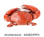 Steamed Crab Isolated On White...