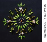 Leaf Mandala On Black...