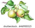 Watercolor Hand Drawn Apple...