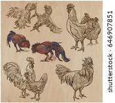 farm animals  poultry  roosters ...   Shutterstock .eps vector #646907851