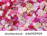 Stock photo beautiful flowers as background 646909909