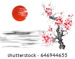 japan traditional japanese... | Shutterstock . vector #646944655