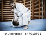 two young males practicing judo ...   Shutterstock . vector #647010931