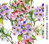 wildflower dogwood flower... | Shutterstock . vector #647026681