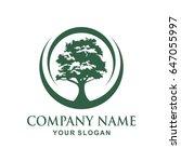 tree logo design | Shutterstock .eps vector #647055997
