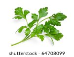 parsley isolated on a white... | Shutterstock . vector #64708099