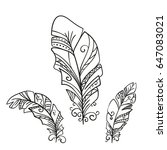 hand drawn decorative feathers... | Shutterstock .eps vector #647083021