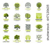 tree vector logotype oak... | Shutterstock .eps vector #647120635