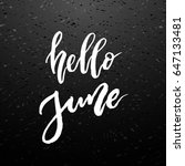 hello summer brush lettering.... | Shutterstock .eps vector #647133481