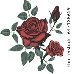 red vector roses | Shutterstock .eps vector #647138659