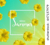 summer background with yellow... | Shutterstock .eps vector #647157979