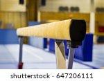 gymnastic equipment  | Shutterstock . vector #647206111