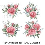 hand painted watercolor... | Shutterstock . vector #647220055