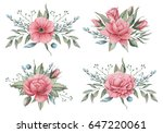 hand painted watercolor... | Shutterstock . vector #647220061
