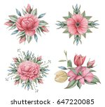 hand painted watercolor... | Shutterstock . vector #647220085