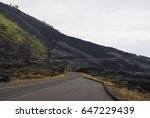 volcanic area in hawaii  big... | Shutterstock . vector #647229439