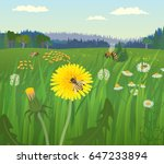 landscape with bees on the... | Shutterstock .eps vector #647233894