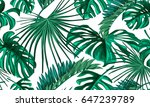 vector tropical palm leaves... | Shutterstock .eps vector #647239789