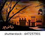 ramadan. a lantern on a tree.... | Shutterstock .eps vector #647257501