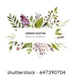 herbal design card | Shutterstock . vector #647390704