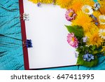 a blank sheet of notepad for... | Shutterstock . vector #647411995