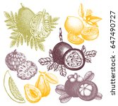 vector collection of hand drawn ... | Shutterstock .eps vector #647490727